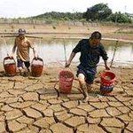 Thúc đẩy hoạt động nghiên cứu, đề xuất giải pháp ứng phó với biến đổi khí hậu tại Đồng bằng sông Cửu Long